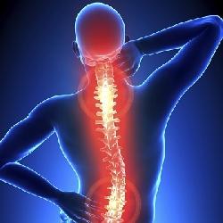 Afbeelding › Chiropractie Twente